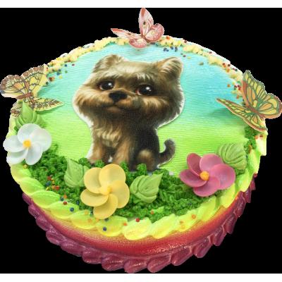 Детский торт 213 / Торт эксклюзивный